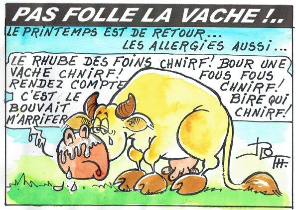 PAS FOLLE LA VACHE 653