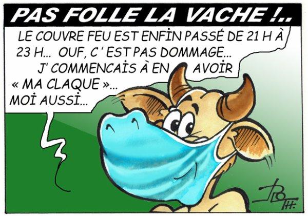 PAS FOLLE LA VACHE 764