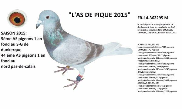 L'AS DE PIQUE 2015