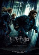 HARRY POTTER AND THE DEATHLY HALLOWS – PART 1 (HARRY POTTER ET LES RELIQUES DE LA MORT – 1e PARTIE)