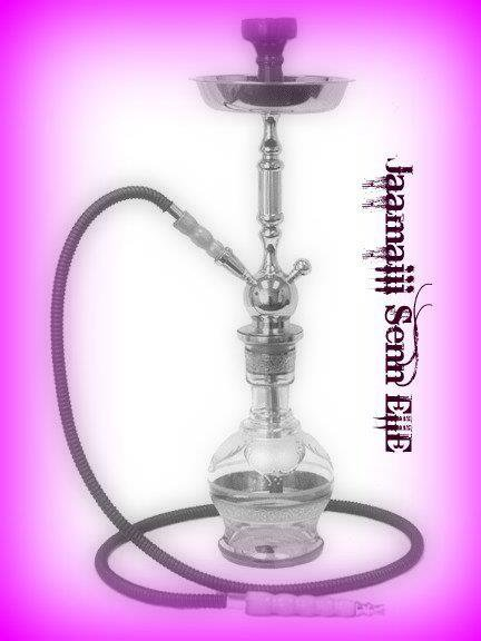 une belle chicha