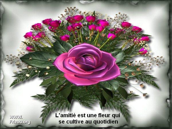 un beau bouquet de l'amitier pour toutes les amies