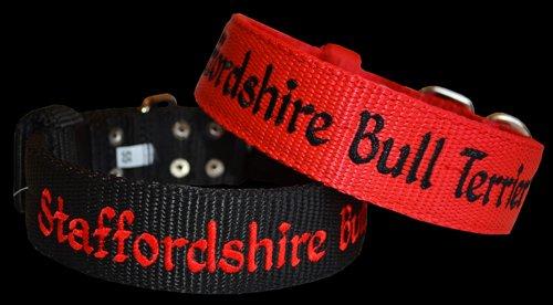 Colliers fermeture US, broderie Staffordshire Bull Terrier, Largeur 4cm, triple épaisseur