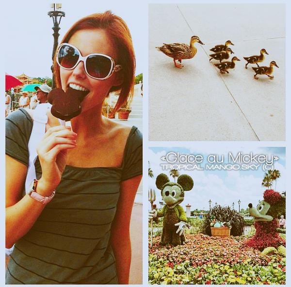 19/05 - L'actuelle Miss Usa, Alyssa Campanella s'éclate à Disney World Resort !On peut la voir dans le parc à thème EPCOT. C'est un parc où 11 pays différents sont représentés. (Source des photos : Instagram)