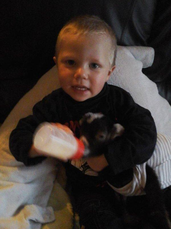 mon petit fils malonn qui donne le biberon a son biquet
