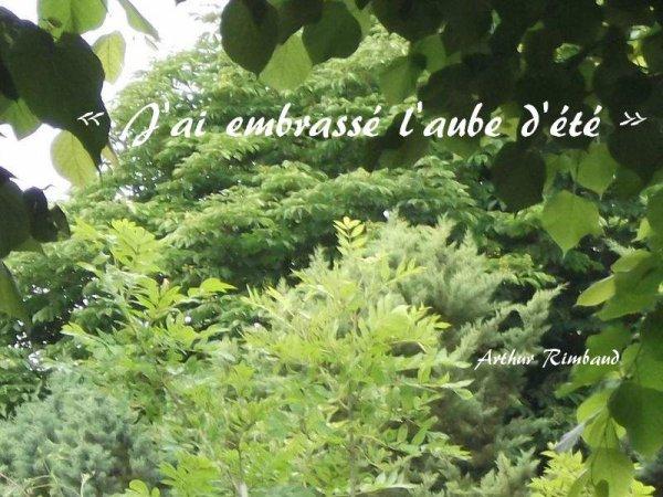 L'aube de Arthur Rimbaud