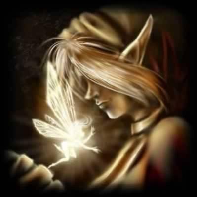 elfe et fée tous ensemble