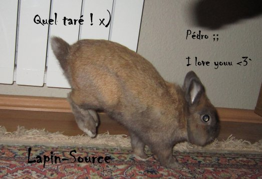 Mon bébé à moi, la mascotte du blog ... ! ♥
