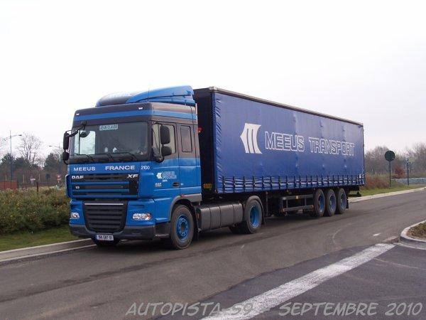 Daf xF - Meeus Transports