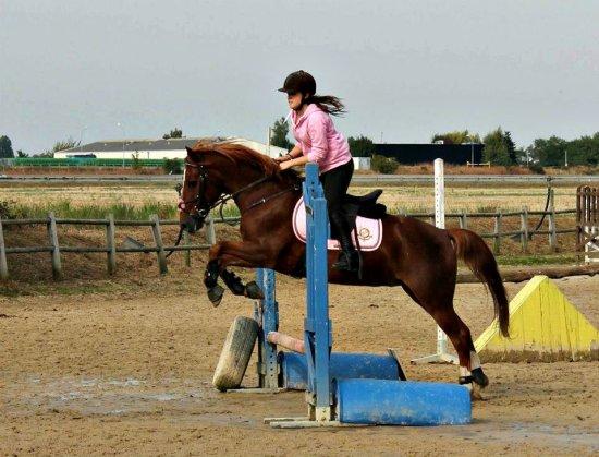Lance ton coeur par dessus un obstacle,ton cheval te suivra. ♥