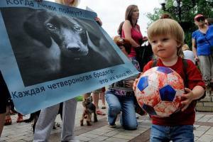 La face cachée de l'Euro 2012: des dizaines de milliers de chiens errants massacrés en Ukraine (vidéos)