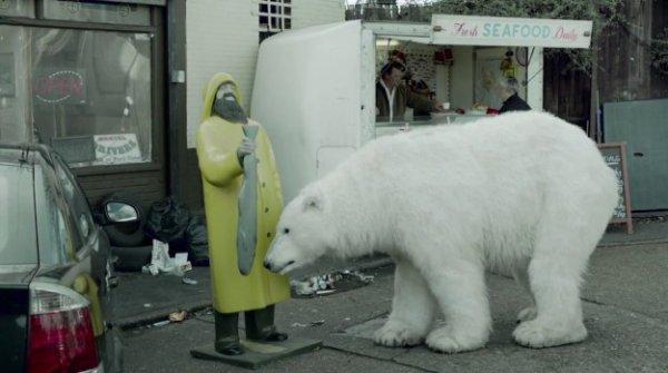 Un ours polaire sans abri dans les rues de Londres