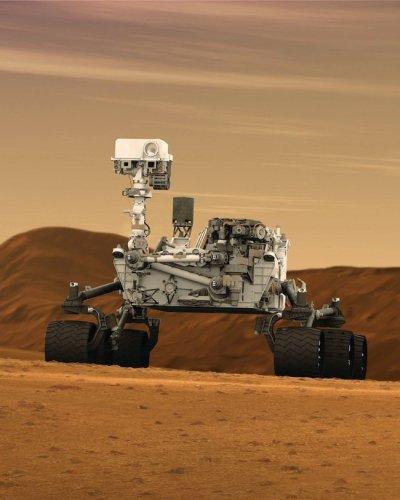 On a trouvé une souris sur Mars !