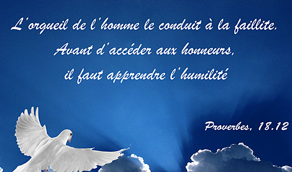 Proverbe et  Citation du soir