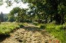 Photo de Longueil-Land