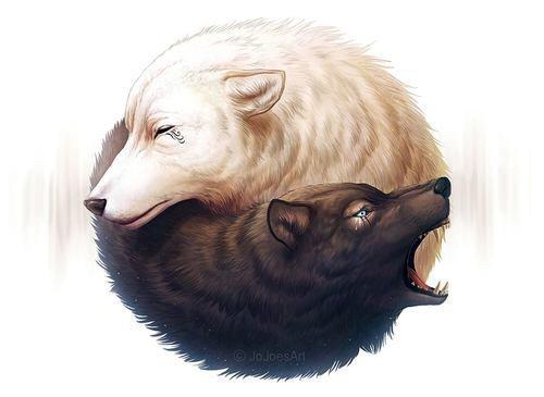 WolfPlush-RP -> Le loup en peluche qui fait des rps ^^