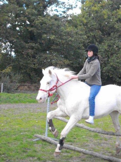 Si quelqu'un te dit que ce n'est qu'un cheval, contente toi de sourire, il ne peut pas comprendre.