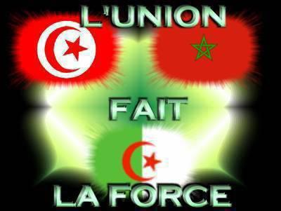 Viiive le Maghreb Uniiited