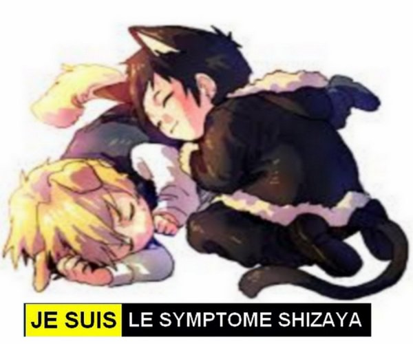♥ ♥ ♥  Je suis le Symptôme Shizaya  ♥ ♥ ♥