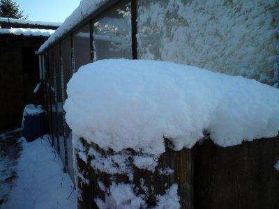 la neige c'est beau mais c'est le bordel des fois
