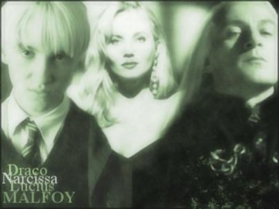 Chapitre 2 :Le Manoir Malfoy