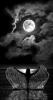 Un amour de sorcière # 11 #