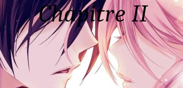 Fiction n°2 : Secret : Chapitre 2.