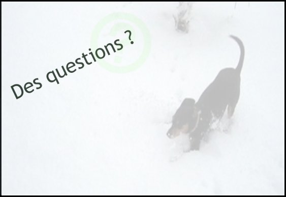Do you have a question ?