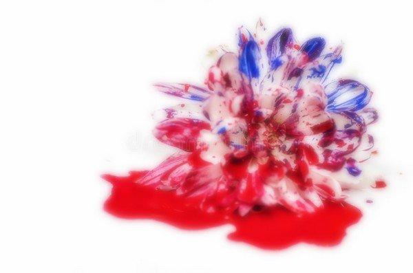 Chapter One  -  Une fleur bénite