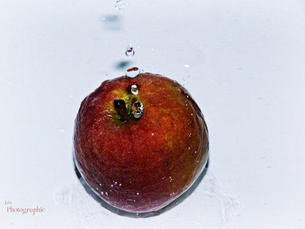Water Apple