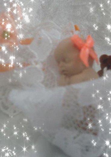 Petite puce mandarine avec son berceau !!!
