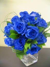 Le bleu ......