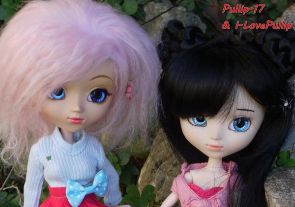 Séance photo de Kim et Méline Par Pullip-17 (2)