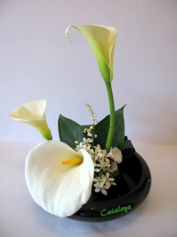 articles de cataleya rose tagg s brin de muguet blog de cataleya art floral. Black Bedroom Furniture Sets. Home Design Ideas