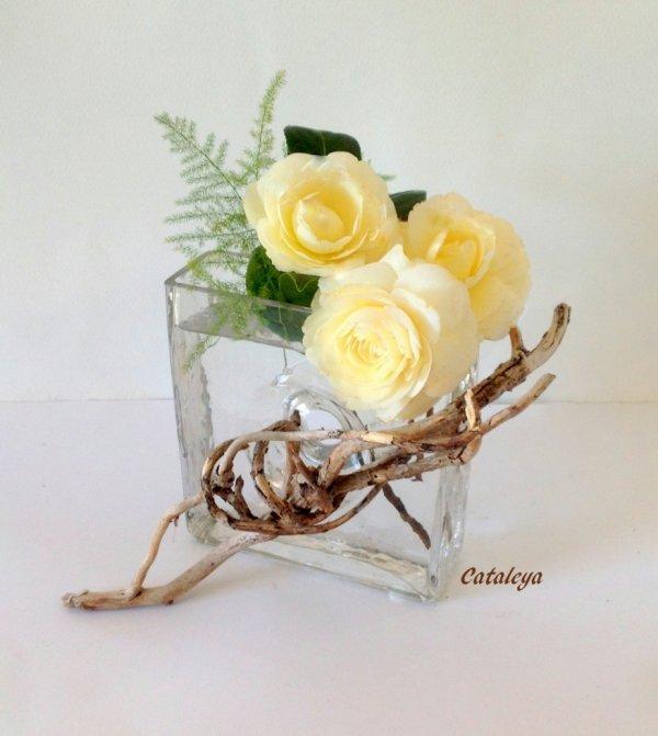 Camélias blancs