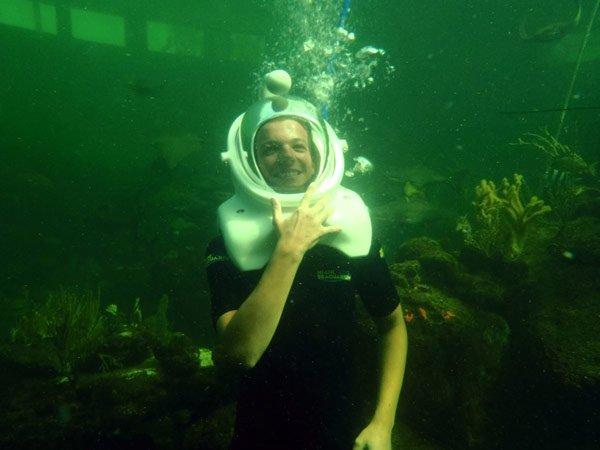Liam y Louis nadando con delfines