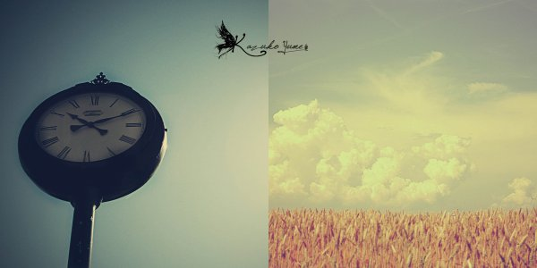 'Les rêves sont si faciles à briser ... si difficiles à réaliser' Shugo Chara vol 2