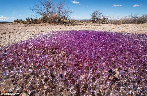 De mystérieuses sphères mauves et globuleuses sont trouvées dans un endroit isolé dans le désert d'Arizona