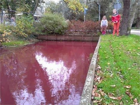 Changements terrestres : un canal devient rouge sang aux Pays-Bas
