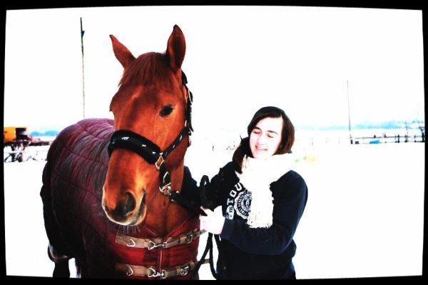 """Février 2012. """"Regarde un cavalier sans son cheval, il lui manque la moitié de son sang."""""""