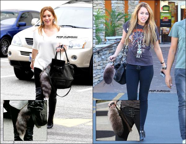 C'est une mode ? La chasse au raton chez Hilary et Miley !