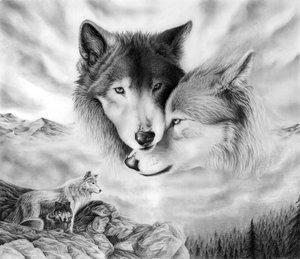 Des Anges et Des Loups.