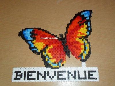 papillon bienvenue