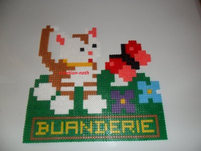chat buanderie
