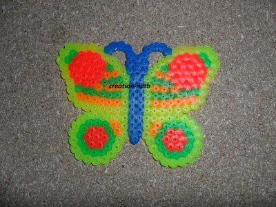 papillon fluo
