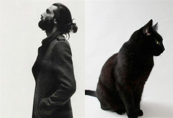 Hommes/chats