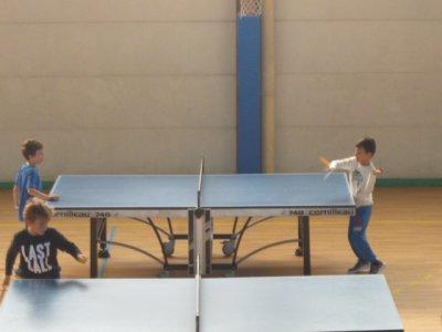 Trimestre tennis de table