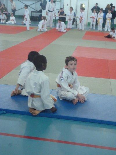 Championnat de judo