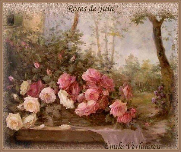 Roses de juin, vous les plus belles