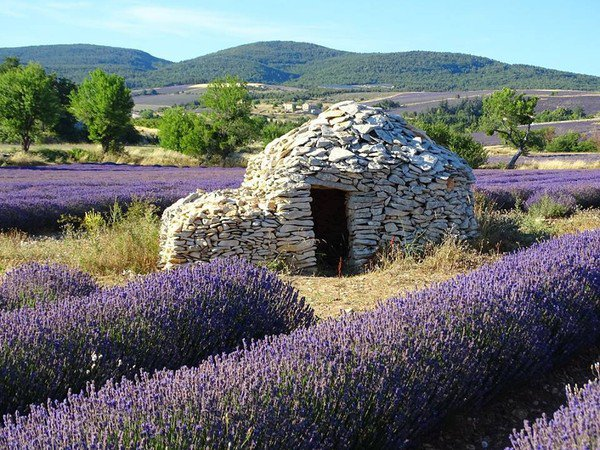 Un tiot coin de Provence, pour le plaisir
